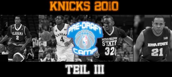 Knicks 2010_3